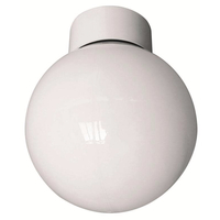 Eterna 100W Bathroom Globe Opal Glass Ceiling Light