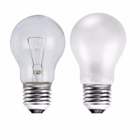 Status 100W Edison Screw GLS Bulb