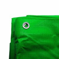 Zexum 6Ft x 4Ft Heavy Duty Green Weatherproof Tarpaulin