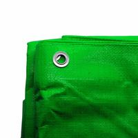 Zexum 10Ft x 12Ft Heavy Duty Green Weatherproof Tarpaulin