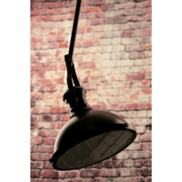 Greenhall Lighting Fermont Adjustable Traditional Iron Studio Ceiling Light