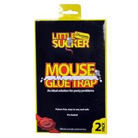Kingfisher Mouse Glue Traps (2 Pack)