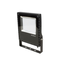 Champion 100W Black LED Floodlight by Robus