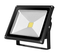 Kingavon Glass-Surface Black LED Floodlight