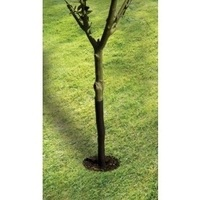 Garland 61cm Spiral Tree Guard