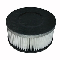 De Vielle Ash Vac Replacement Air Filter