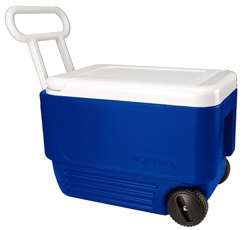 Igloo 38 Litre Cooler